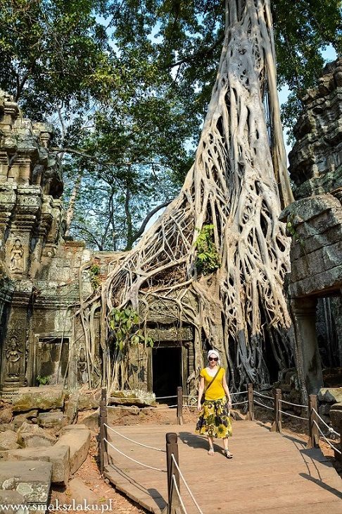 Kambodża, Ta Prohm