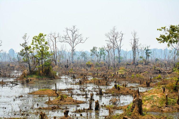 Kambodża, Neak Pean